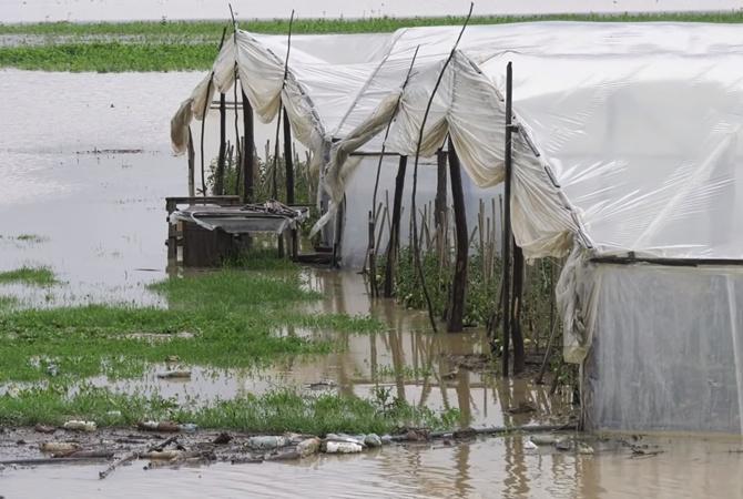 Фермеры Закарпатья после паводка бросили овощной бизнес и выезжают на заработки