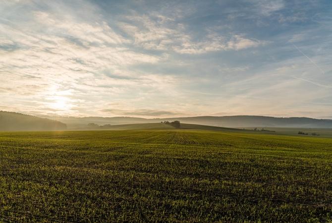 У Зеленского обещают отмену моратория на продажу земли
