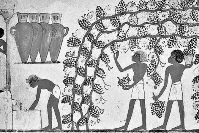Древнее пиво напоминало кашу