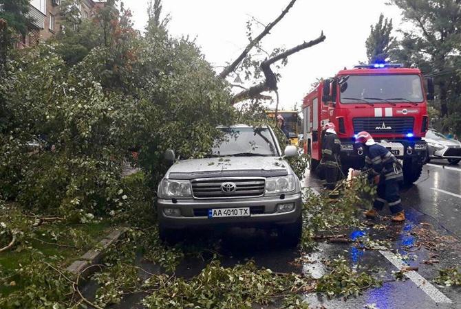 В Ровенской области на улице ветром оборвало провод: током убило женщину