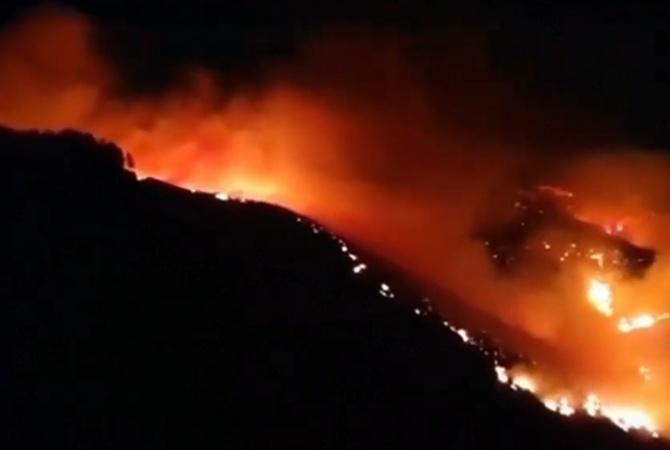 На Канарских островах горит более 900 гектаров леса [видео]