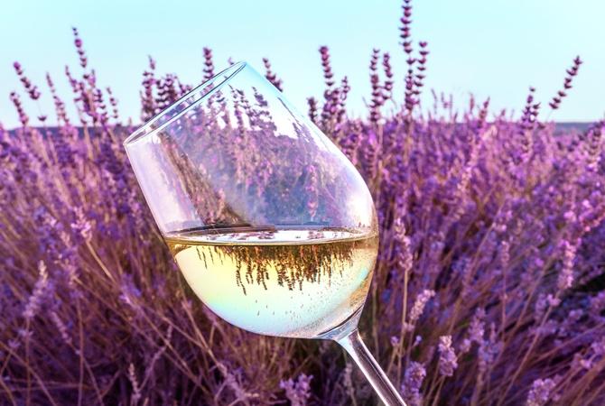 Факт. Рейтинг лучших белых вин Украины