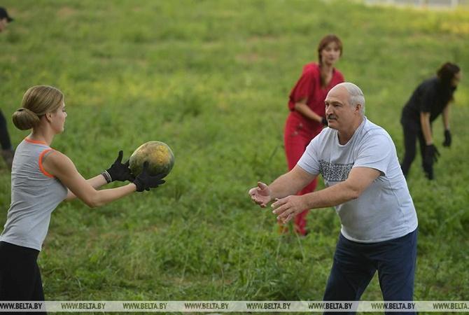 Накануне юбилея Лукашенко с красивыми девушками собрал арбузы [видео]