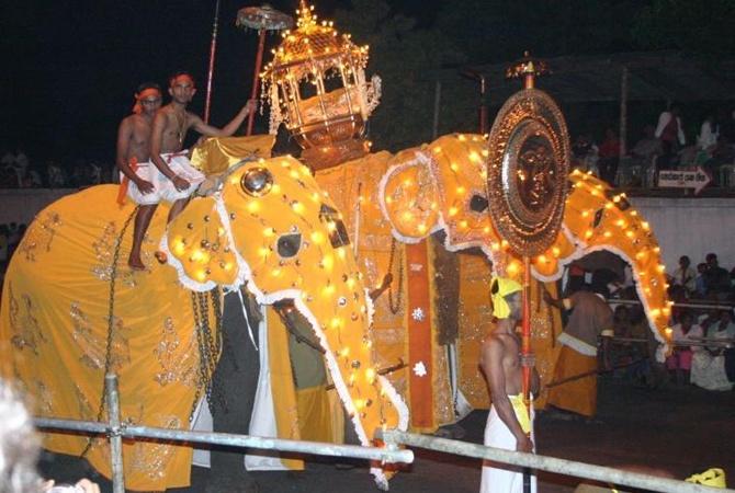 На Шри-Ланке слоны во время праздника бросились на людей