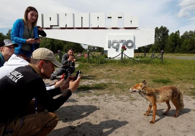 Для Чернобыльской зоны разработают рекламный бренд
