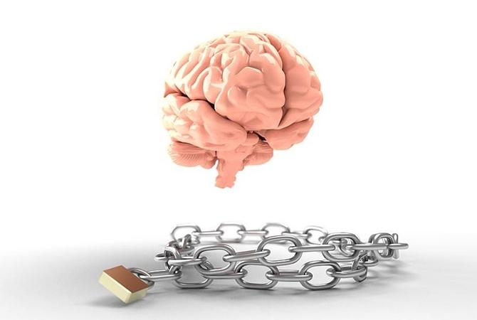 Чем питать мозг: 5 самых-самых продуктов