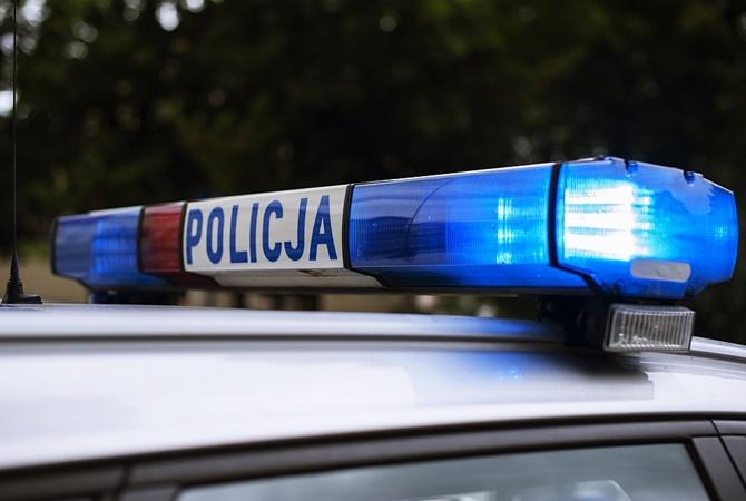 В Польше поймали двух украинцев на крупной контрабанде янтаря