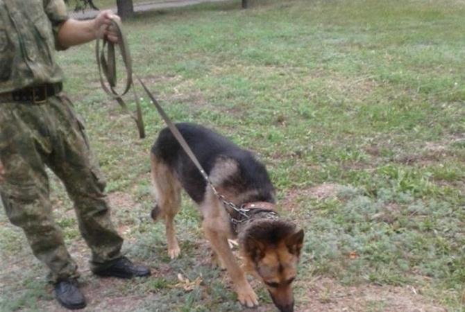 В Никополе служебная собака отыскала четырехлетнюю девочку