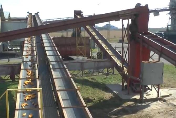 """После модернизации завод """"Укрлендфарминг"""" полностью обеспечивает аграриев собственным посевным материалом"""