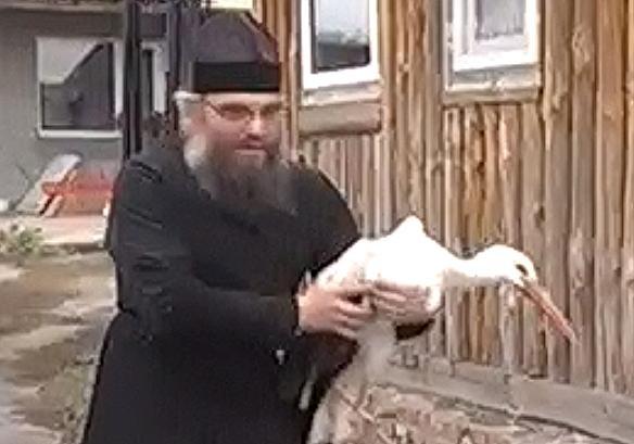 Черниговский священник 10 лет ухаживает за аистами